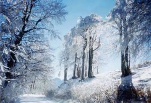 Cold weather – is it dangerous for your health?