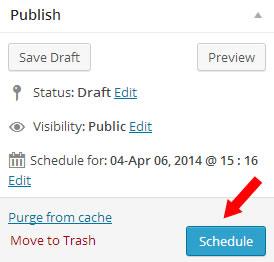 schedule a wordpress post - step 3
